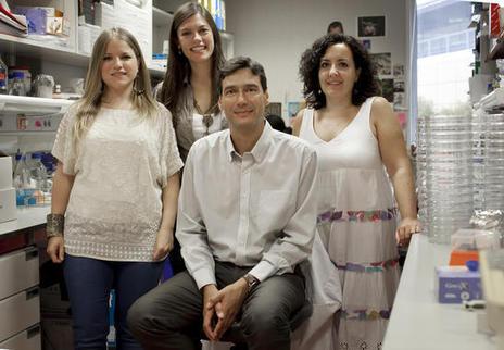 Un trabajo español, descubrimiento del año en medicina regenerativa / Noticias / SINC | CMC_VivirmasVivirmejor | Scoop.it