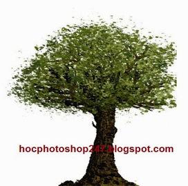 Cách vẽ cái cây bằng photoshop ~ Hoc Photoshop | Học Photoshop căn bản, nâng cao | Hoc Photoshop | Học Photoshop ở TPHCM | Scoop.it