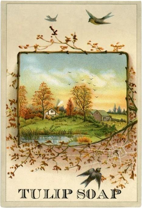 Pretty Autumn Scene Image! - The Graphics Fairy   Decoupage   Scoop.it