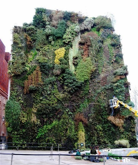An art installation of green plants growing on the... | Vertical Farm - Food Factory | Scoop.it