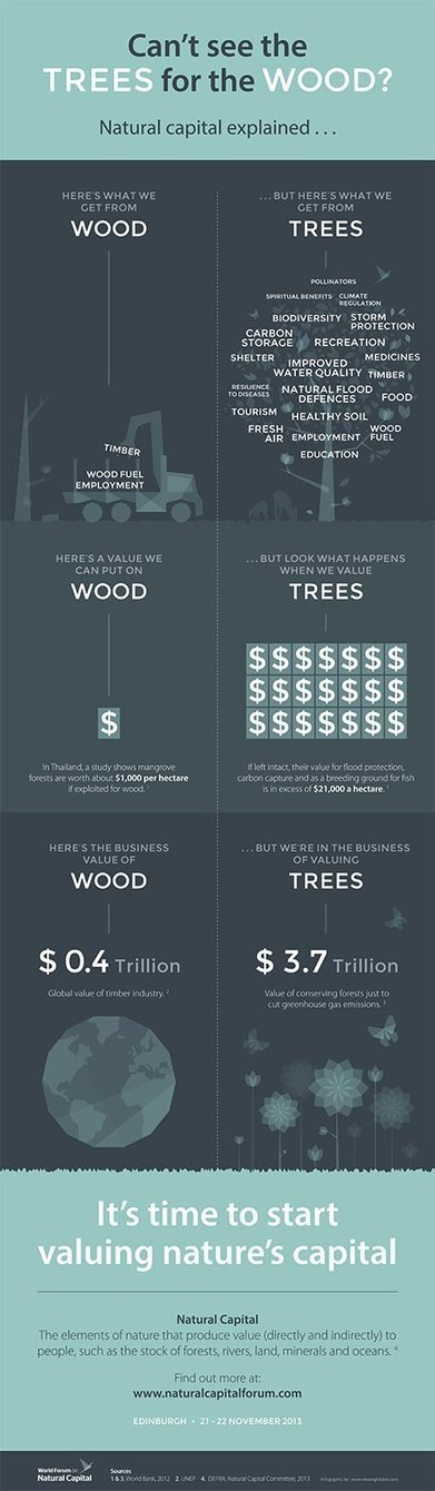 Infographic:  What is natural capital? | Suburban Land Trusts | Scoop.it