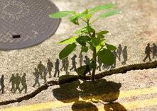 UQAM | Coeur des sciences | Place à l'écologie urbaine! | (Culture)s (Urbaine)s | Scoop.it