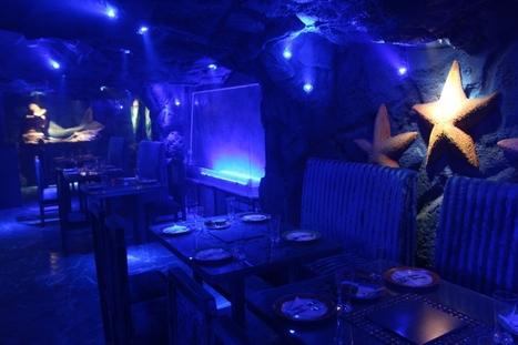 Jungle Jamboree - Jungle & Aqua Themed Restaurant, Connaught Place, New Delhi | Interior Designing Services | Scoop.it