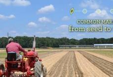 Food Hubs | Healthy Food Access Portal | Vertical Farm - Food Factory | Scoop.it