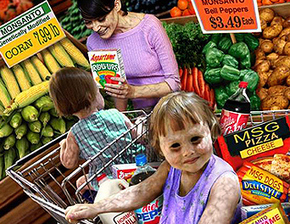 Dumbing Down Society Part I: Foods, Beverages and Meds | The Vigilant Citizen | Fluoride and pineal gland | Scoop.it