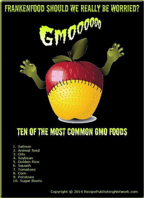 Frankenfood Should We Really be Worried? | Recipe Publishing Network | American Food | Scoop.it
