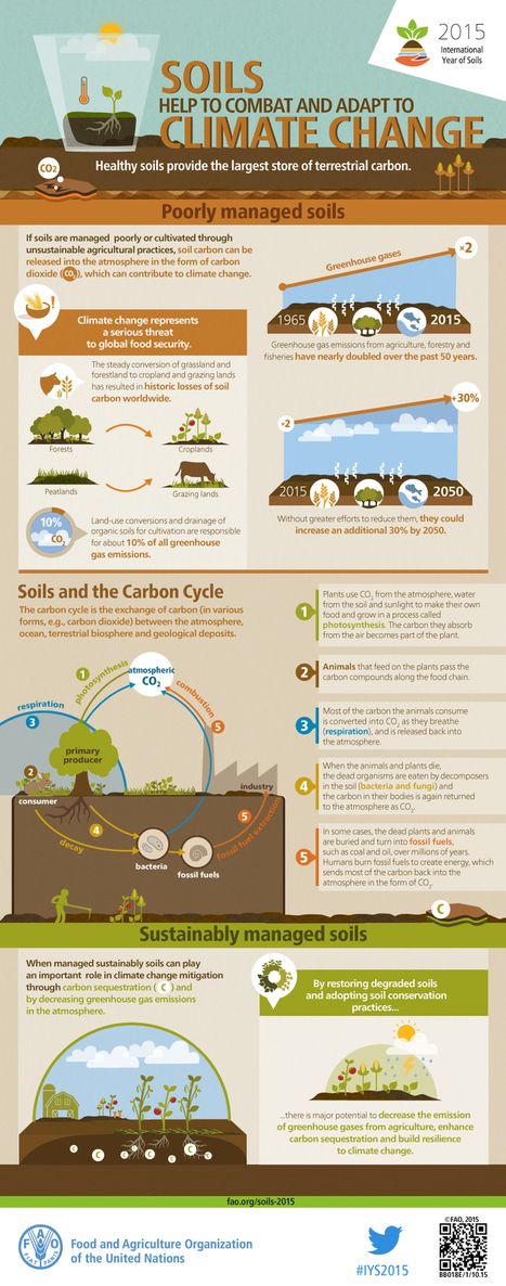 Soils help to combat and adapt to climate change | Villes & développement durable | Scoop.it