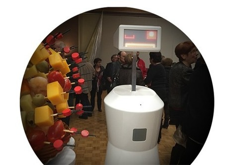 Evotion - Robots à louer, accueil et événements d'entreprise | Une nouvelle civilisation de Robots | Scoop.it