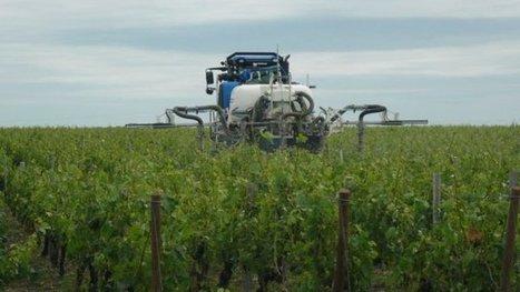 Des pesticides retrouvés dans les poussières de maisons proches de cultures notamment de vignes - France 3 Aquitaine   décroissance   Scoop.it