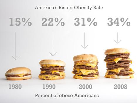 cheeseburgerbargraph.jpg (1024x768 pixels)   Anti-depressants informative speach   Scoop.it