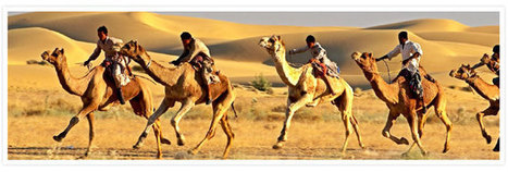 Rajasthan Travel Packages,Rajasthan Tours,Royal Rajasthan Vacation,Rajasthan Heritage Tour Packages,Tours to Rajasthan | India Holiday Vacation | Scoop.it