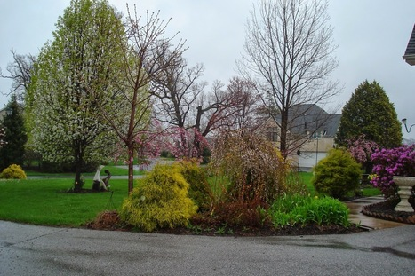Keeping Up With The Landscaping Trends of 2014 | Landscape Ideas and Tips | Scoop.it