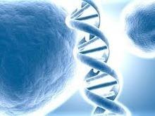 Engenharia Genética Defenição | Engenharia Genética | Scoop.it