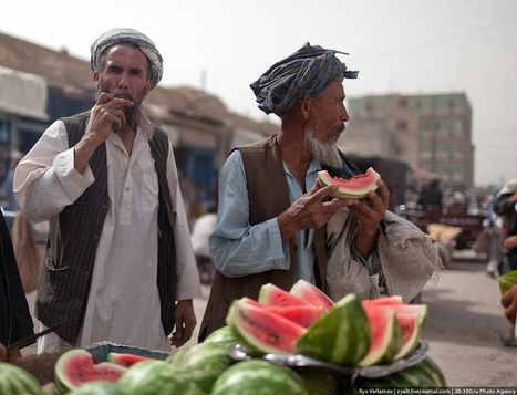 The Life of Ordinary Afghan People | Agricultural Biodiversity | Scoop.it