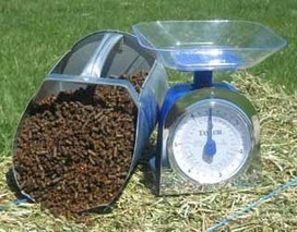 Feeding Horses A Balanced Diet: New Research | EQUINE SCIENCE | Scoop.it