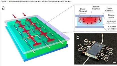 Researchers Develop Self-Healing Solar Cells   greenworld   Scoop.it