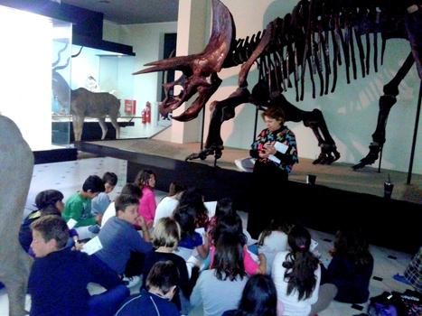 Επίσκεψη στο Μουσείο Γουλανδρή | Γεννάδειος Σχολή-Δ' Τάξη    2013-2014 | Scoop.it
