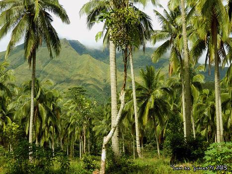 'San sa 'pinas?!: Sa Nature Villa Banahaw – Dolores, Quezon | 'San Sa 'pinas?! | Scoop.it