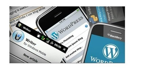 WordPress déclare supporter Google Accelerated Mobile Pages (AMP) - Arobasenet.com | Les Outils du Community Management | Scoop.it