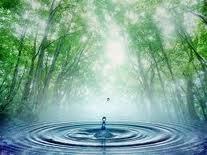 Des solutions pour votre bien-être existes « Remèdes Naturels « Santé « vivre mieux naturellement | Au commencement du temps | Scoop.it