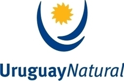 Uruguay Natural: ¿concepto o simple marca? | MOVUS | Scoop.it