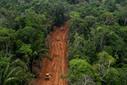 Oil company breaks agreement, builds big roads in Yasuni rainforest - Mongabay.com | Rainforest EXPLORER:  News & Notes | Scoop.it