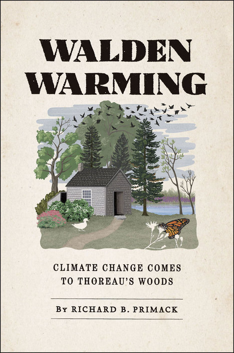 What climate change has done to Walden's woods - environment - 15 April 2014 - New Scientist | Ask not what the citizens can do for science but what science can do for citizens | Scoop.it