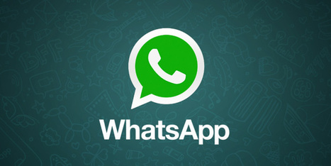 WhatsApp sta prendendo azioni aggressive | Lemon tube | News | Scoop.it