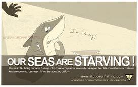 Artistoranimator: My hungry pet shark | Observatory Water® | Scoop.it