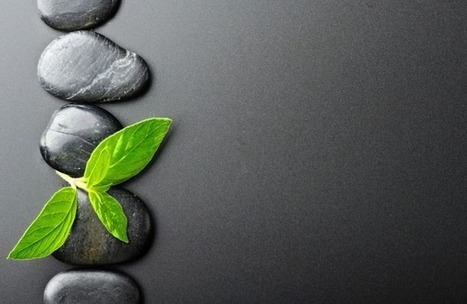 How To Achieve A Zen Attitude To Cope With Every Day Problems | Innovatus | Scoop.it