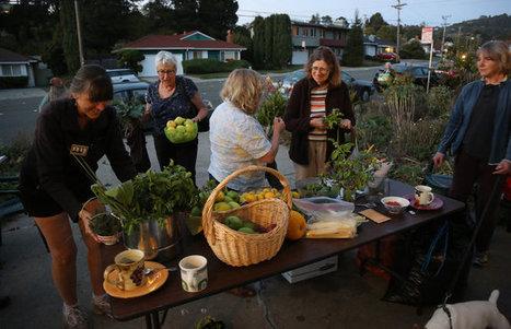 Urban Farmers Trade Goods and Stories at 'Crop Swaps' | Peer2Politics | Scoop.it