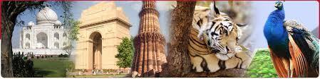 Travel Agency in India   jsdjitendra   Scoop.it