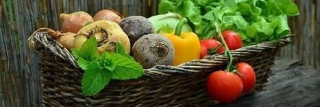 5 fruits et légumes par jour : encore de gros efforts à faire | Les bons conseils de la CNM | Scoop.it