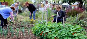Non à une interdiction des potagers privés ! | Jardin Potager Biologique | Scoop.it