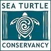 Sea Turtle Conservancy :: Simple Actions You Can Take | IELTS, ESP and CALL | Scoop.it
