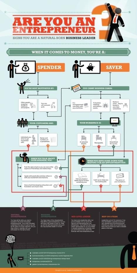 [Infographie] Quel entrepreneur êtes-vous face à l'argent? Plutôt ... - Maddyness | Scoops en vrac | Scoop.it