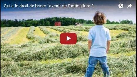 «La bataille des producteurs de lait » chante le désespoir de l'agriculture | Questions de développement ... | Scoop.it
