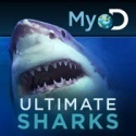 Go Beyond Shark Week with Ultimate Sharks for iPad | Tapscape | iPadSchools | Scoop.it