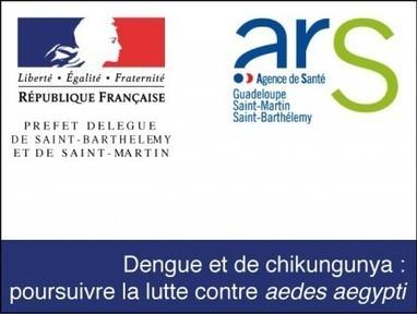 Saint Barth. Lutter contre la dengue | Outre-Mer | Scoop.it