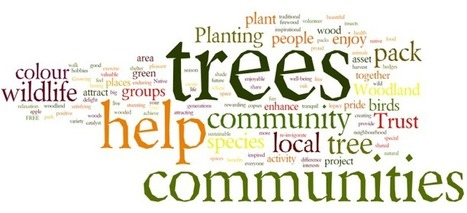 Free trees for communities, schools and youth groups from The Woodland Trust | Deforestation in Malawi | Scoop.it