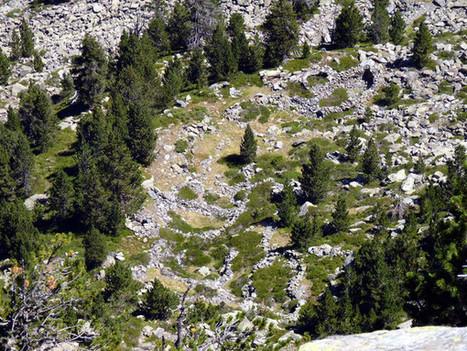 Arqueólogos descubren 344 vestigios arqueólogicos en una zona de alta montaña en Lleida   Megalitos, cantales, bolos y peñas. Petroglifos. Piedras sagradas.   Scoop.it
