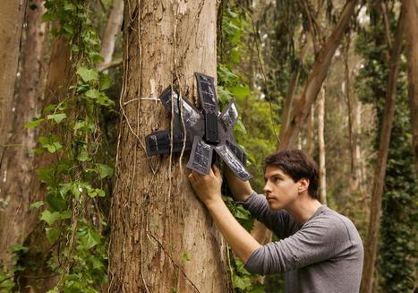 11 Ways Technology Stops Crime Against Endangered Animals | Using Wildlife Survey Data | Scoop.it