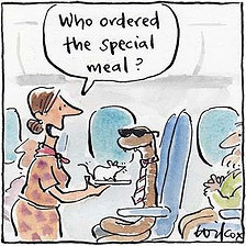 Snake on a plane! | Australian Culture | Scoop.it