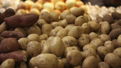 Potatoes Not the Best Vegetable | Your Food Your Health | Scoop.it