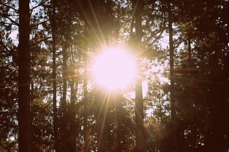 Protecting Solar Citizens in South Australia | P2P Foundation | Peer2Politics | Scoop.it