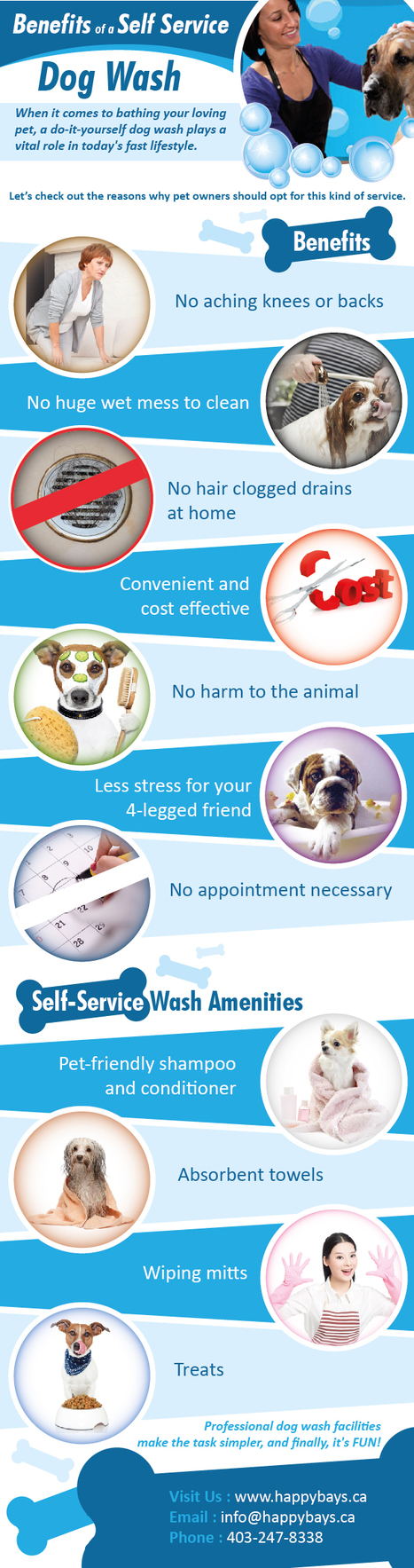 Benefits of a Self Service Dog Wash | Good Dog and Pet Washing Service | Scoop.it