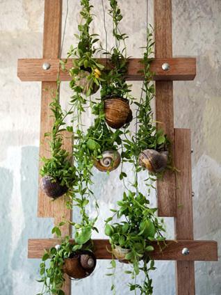 Top 10 Gardening Trends for 2014 | Landscape Design DIY, Tips, and Best Practices | Scoop.it
