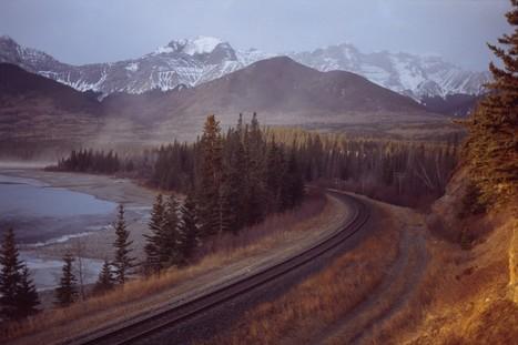 Viaggi in Canada alla ricerca della fauna del grande ovest | ViaggiSudAfrica | Scoop.it