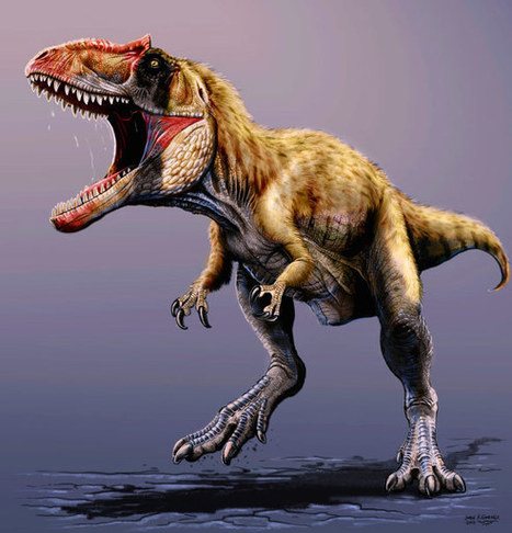 Siats meekerorum: Large predatory dinosaur fossils found similar in size with T. rex | Amazing Science | Scoop.it
