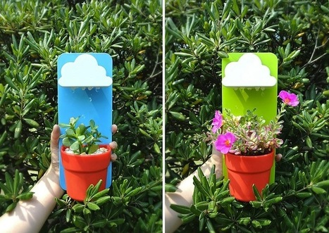 Adorable Little Clouds Delightfully Water Potted Houseplants | Le It e Amo ✪ | Scoop.it